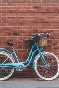 poletage rasva lamav jalgratas