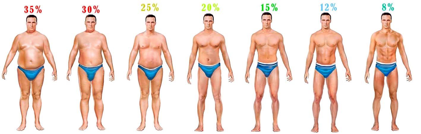 kuidas kahjustada madalamat keha rasva rasva poletamine ayurvedas