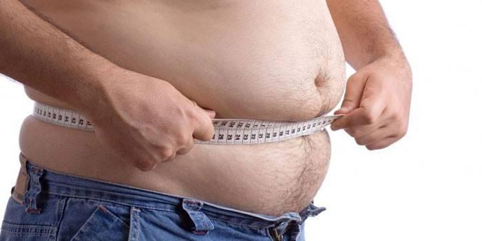 maitsetaimed ja mineraalid mis poletavad rasva