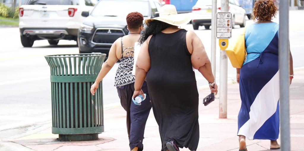 fat burner plus luxe looduslikud rasva poletavad raputused