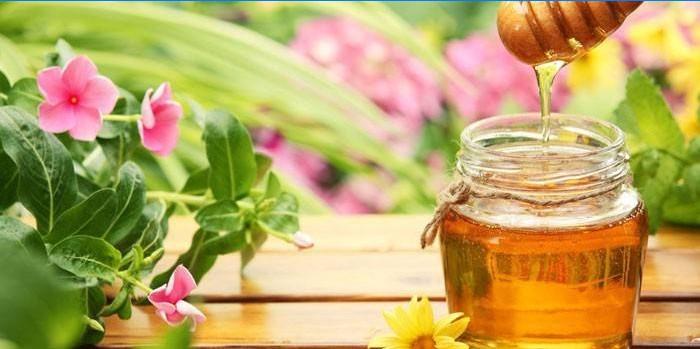 kas mesi on rasva poletamise omadused rasva kadude suda