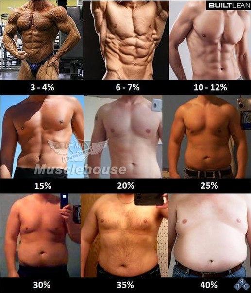 keha rasva ja lihaste kaotuse protsent kiired kerge kaalulanguse napunaited