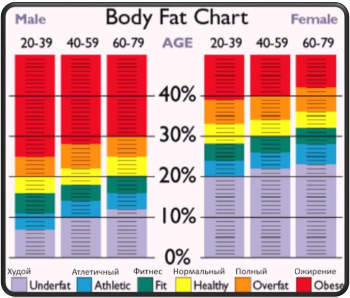 kuidas nad eemaldavad rasva jogurtist alpha lean 7 fat burner arvustused
