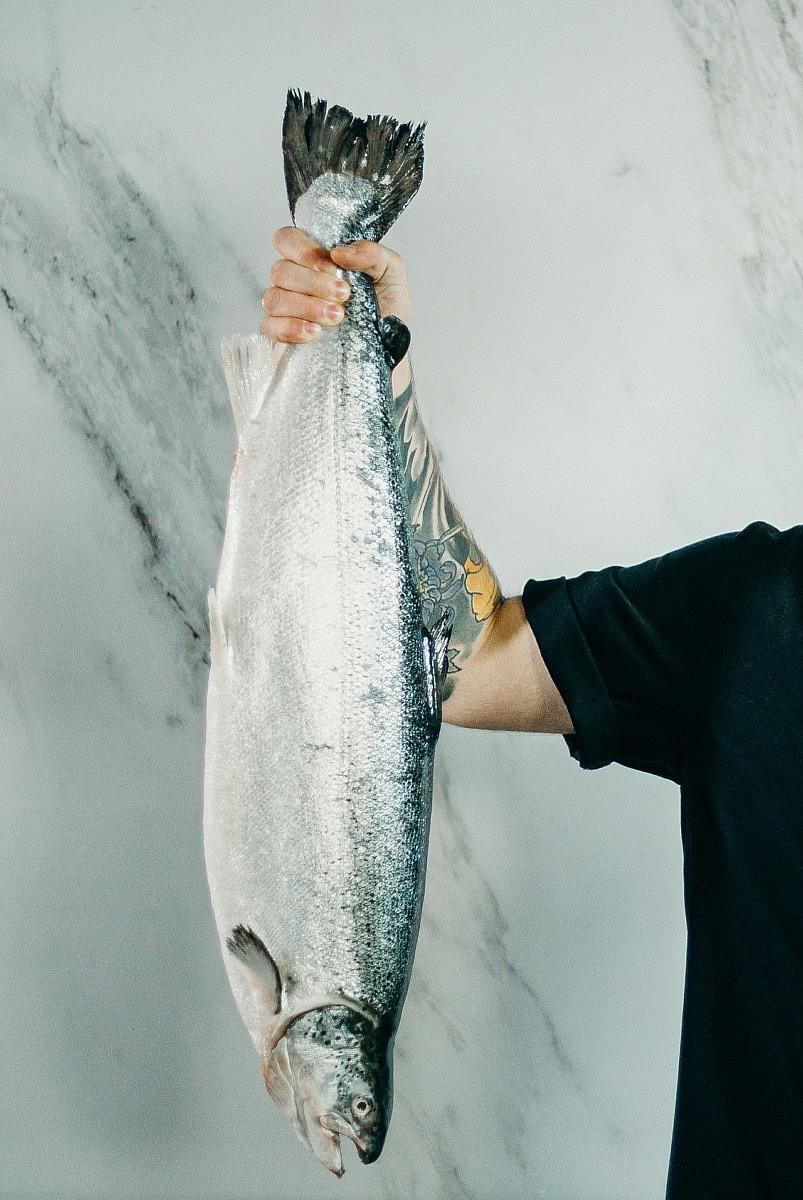 oline kala rasva kaotus motiveerivad plakatid kaalulangus