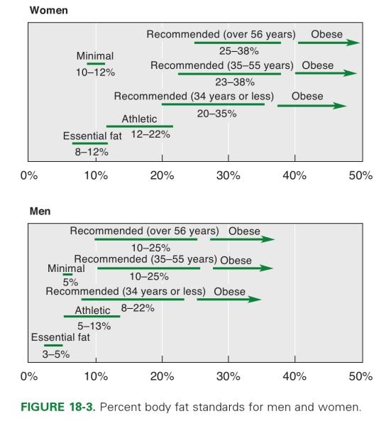 rasva kaotuse aeglane protsess rasva kaotuse pohialused
